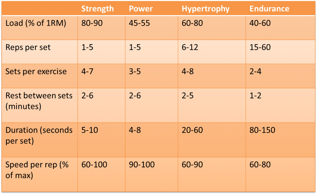 Secret for bigger arms revolution xtreme fitness for Undulating periodization template